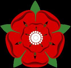 The Lancashire Rose