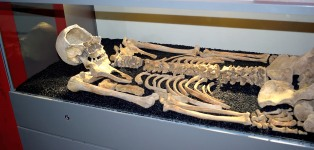 These remains were buried in the nave of the church.